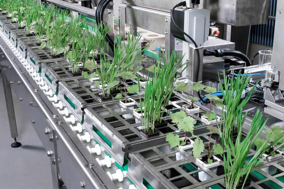 BREL automation-process-engineering